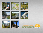 Northridge Vision